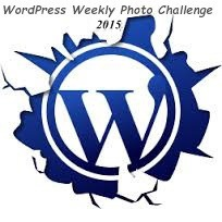 weekly-photo-challenge-logo